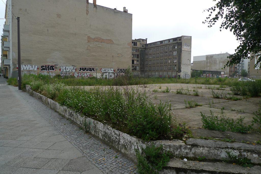 Natura Urbana - die Brachen von Berlin - Matthew Gandy
